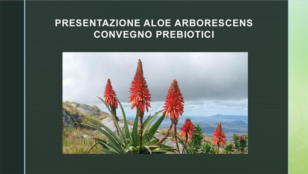 Aloe Arborescens - Convegno prebiotici